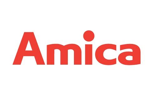 www.amica.pl